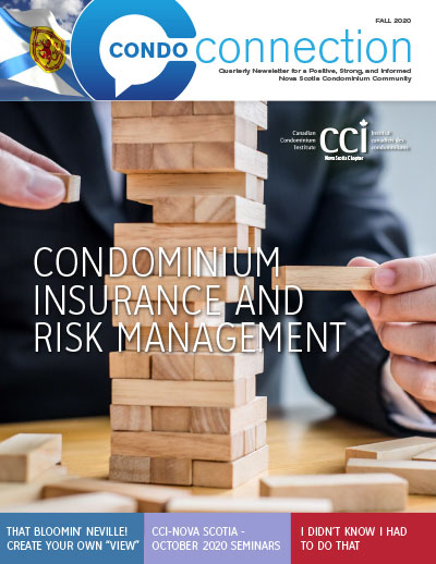 CCI NS Magazine cover image